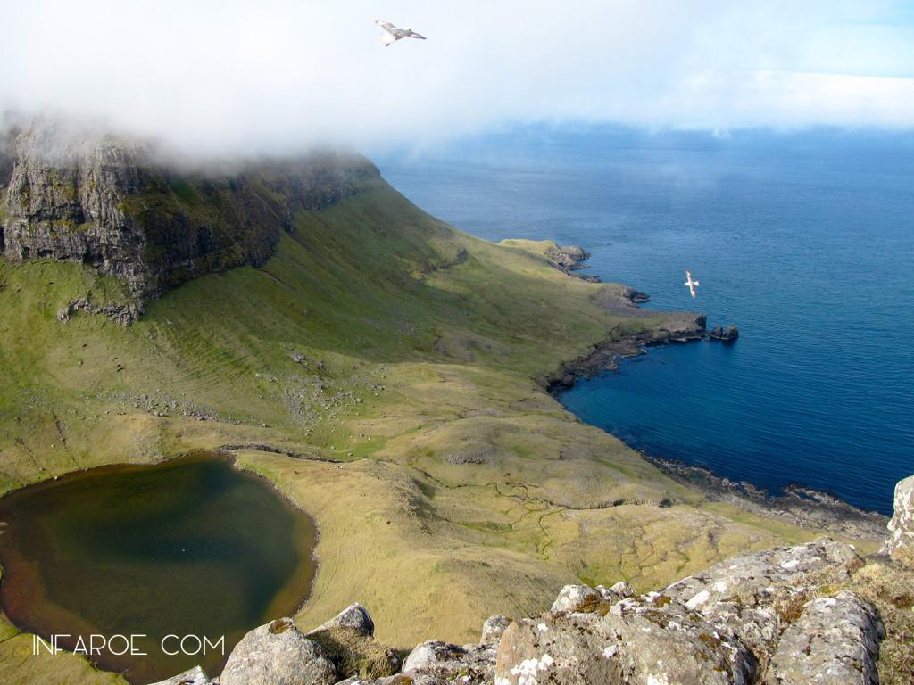 Hvannhagi, Faroe islands