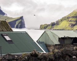 Faroese population increasing (Almost 50.000)